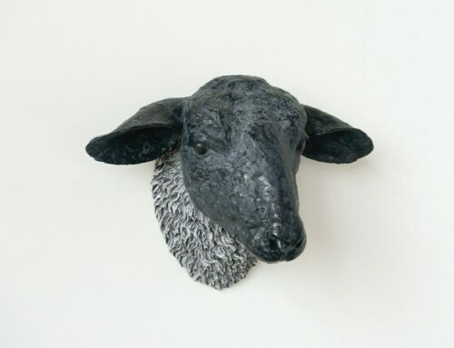 Black Sheep Head Wall Mount Resin Sculpture